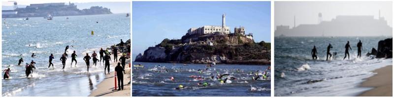 Alcatraz swim landing