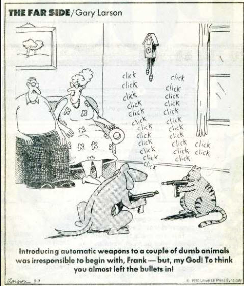 Far Side Guns